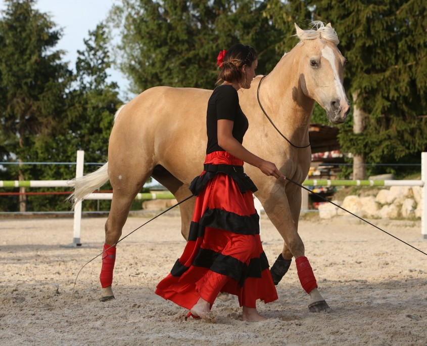 Equipassion a un incroyable talent! - Partie 2 Avances - Dudingen - 13.06.2015